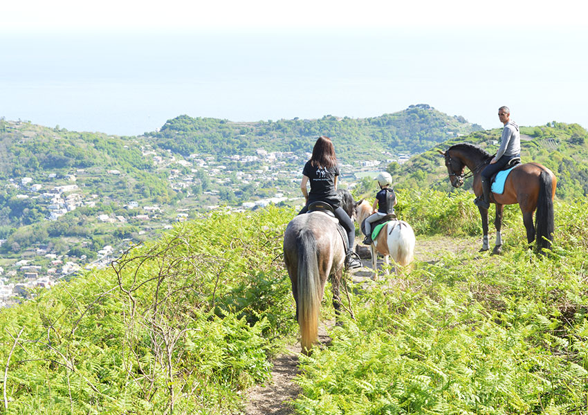 Escursione in montagna con i cavalli ad Ischia