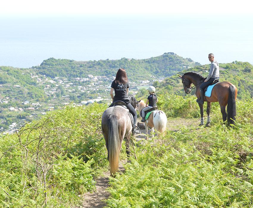 Le escursioni a cavallo guidate di Aragona arabians